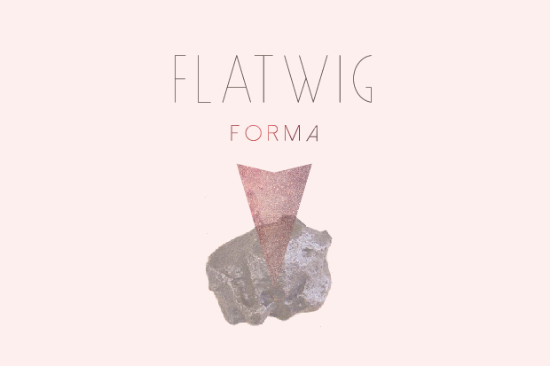 flatwig_press_release